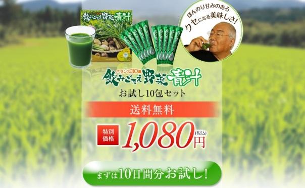 飲みごたえ野菜青汁 公式09