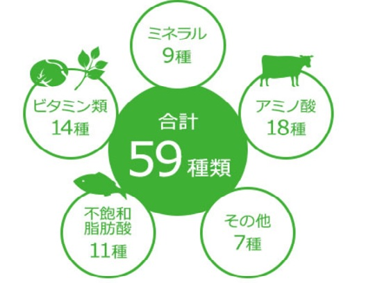 59種類の栄養素 図解